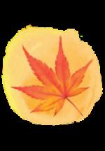 紅葉ICON