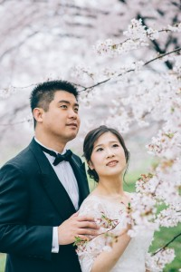 東京櫻花婚照拍攝