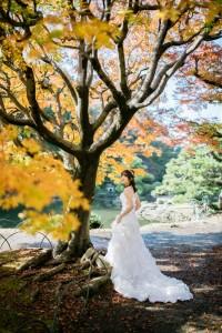 東京都楓葉樹下新娘子婚照