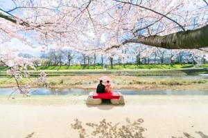 日本週年紀念攝影
