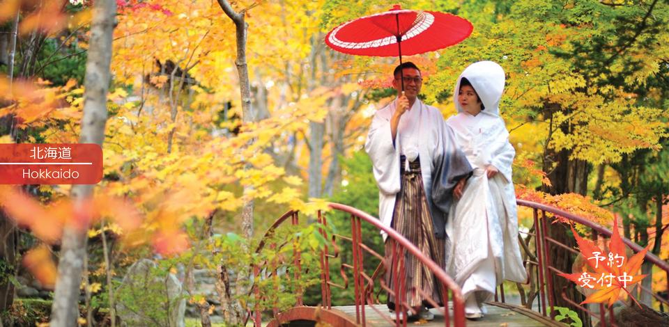 北海道 秋天紅葉