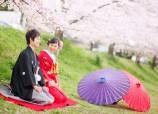 京都賞櫻花拍婚照之旅
